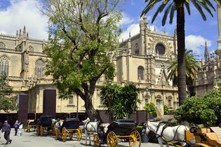 top attractions, travel guides,trip plans, local deals in Seville