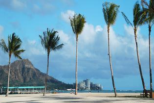 top attractions, travel guides,trip plans, local deals in Honolulu