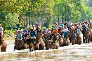 top attractions, travel guides,trip plans, local deals in Chiang Mai